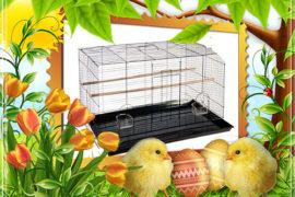 Velikonoční nadílka pro zvířata v nouzi